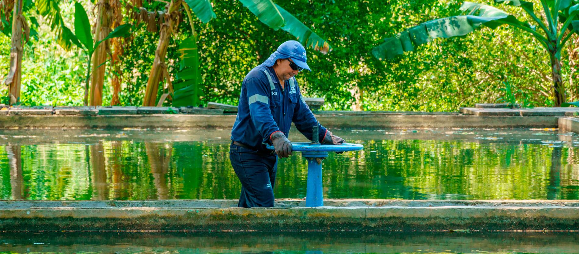 portadas-aguas-servicios